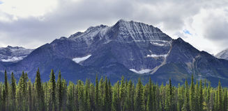 High mountains of the Canadian Rockies along the Icefields Parkway between Banff and Jasper. In the fall stock photos
