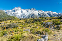 High mountains in Mount Cook National Park Stock Photos