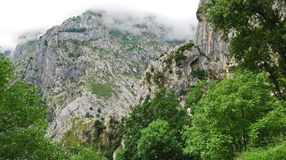 High mountains in national park Picos de Europa Royalty Free Stock Images