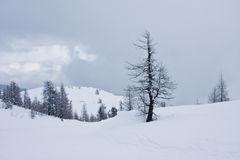 High mountains under snow in the winter Royalty Free Stock Photos