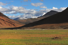 High mountains valley: in the foreground a meadow, a little green grass on brown earth in the background mountains, the sun goes d Stock Photography