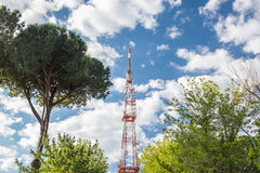 High network telecommunication tower and green trees Royalty Free Stock Image