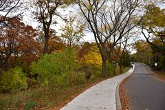 High Park in Toronto in Late Fall Stock Photography
