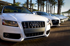 High performance luxury lease and rental cars Royalty Free Stock Photo