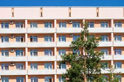 High pine on the background of the hotel building royalty free stock photo