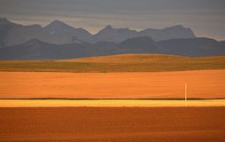 High Plains of Alberta. With Rocky Mountains in distance Stock Photo