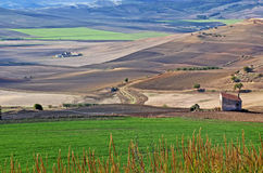 The high plains near Minvervino Murge Royalty Free Stock Images