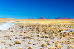 High Plains and Volcanoes Royalty Free Stock Image