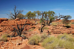 High Plateau of Kings Canyon Stock Photos