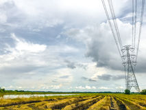 High power pylons and natural green with clear skies. High power pylons and natural green with bright sky and sun stock image
