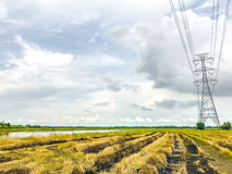 High power pylons and natural green with clear skies. High power pylons and natural green with bright sky and sun royalty free stock image