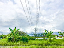 High power pylons and natural green with clear skies. High power pylons and natural green with bright sky and sun stock photo