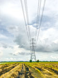 High power pylons and natural green with clear skies. High power pylons and natural green with bright sky and sun royalty free stock photos