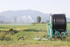 High Pressure Hose and Reel Irrigation Royalty Free Stock Photo