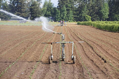 High pressure Irrigation Royalty Free Stock Photography