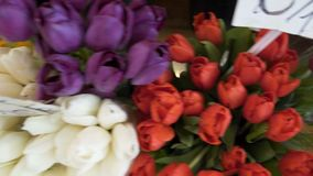 High prices for bouquets of tulips and roses on city market, garden business. Stock footage stock video footage