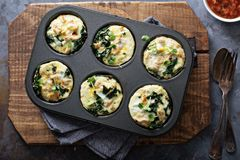High protein egg muffins with kale. And ground turkey in a muffin tin overhead shot royalty free stock images