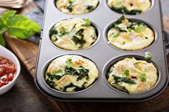 High protein egg muffins with kale stock images