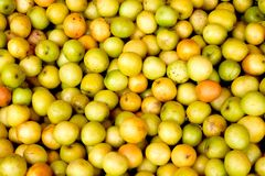 High quality crispy winter jujube jujube. For background royalty free stock images