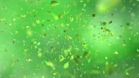 Exploding green tea leafs in 4K