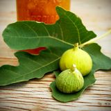 Vintage fig fruit canvas and poster royalty free stock images