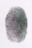 High quality fingerprint Royalty Free Stock Photography
