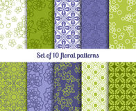 High-quality floral patterns Stock Photography