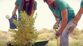 In high quality format happy friends gardening for the community stock footage