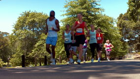 In high quality format happy people running race in park stock footage