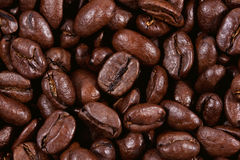High quality fresh roasted coffee beans Royalty Free Stock Photography
