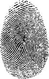 Fingerprint. High quality illustration of human fingerprint isolated on white background - file available in vector eps and jpg Stock Photos