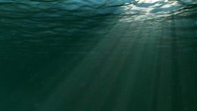 Underwater scene. Large popular marine background. High-quality loop animation of ocean waves. The rays of light shone. Large popular marine background stock video