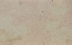 High quality marble texture. Lotus Rosalita Royalty Free Stock Images
