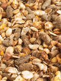 High quality natural sportive  muesli background. for horse. Stock Image