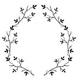 High quality original frame of the branches of the tree isolated Royalty Free Stock Image