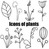 High quality original set of plants icons on white back Vector Illustration