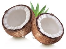 High-quality photos of coconuts. Royalty Free Stock Photo