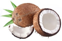 High-quality photos of coconuts Stock Photo