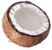 High-quality photos of coconuts Royalty Free Stock Image