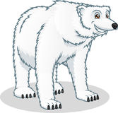 High Quality Polar Bear Vector Cartoon Illustration Royalty Free Stock Photography