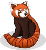 High Quality Red Panda Cartoon Vector Illustration Royalty Free Stock Photography