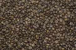 High Quality Roasted Coffee Beans Royalty Free Stock Photos
