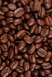 High quality roasted coffee beans Royalty Free Stock Images