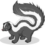 High Quality Skunk Vector Cartoon Illustration Stock Photography