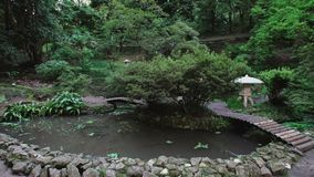 Japanese garden in the park, pond with floating red carp, walking bridges, tall trees and ferns stock video
