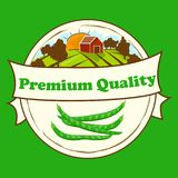 High quality vector illustration of beans label. Symbol for sauce product label or grocery store, shop and farm market design. Farm on green meadow Royalty Free Stock Image