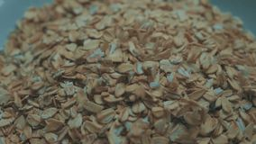 High quality video of falling oatmeal in real 1080p slow motion. High quality video of falling oatmeal in real slow motion breakfast cereal close-up stock video footage