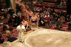 High ranking sumo wrestlers entering the arena Stock Photography