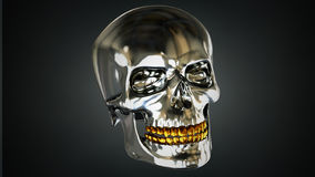High res 3d Chrome and Gold skull Stock Image