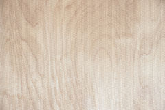 High texture. High resolution blonde wood texture Royalty Free Stock Photos